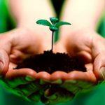 Nâng cao ý thức học sinh bảo vệ môi trường.